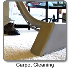 expert rug cleaning Washington DC