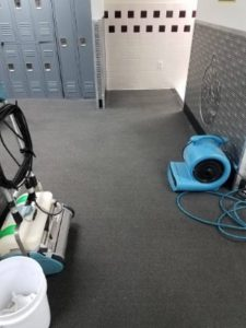 Carpet Cleaning Myths Debunked Cleaning Your Carpets