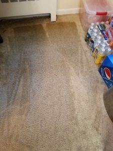 Carpet Cleaning Company In Tatallon Md Water Damage